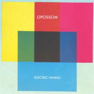 Opossom_Electric_Hawaii_300x300