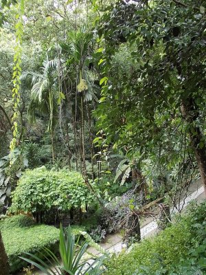tropical_spice_garden