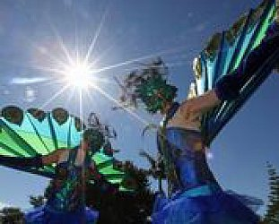 THE TIMETABLE FOR WOMAD TARANAKI 2016