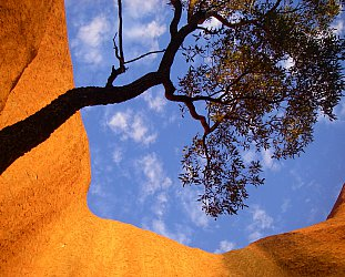 Uluru/Ayers Rock, Outback Australia: Into the great wide open