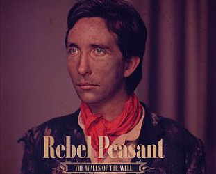 Rebel Peasant: The Walls of the Well (Rebel Peasant)