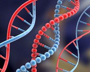PROFESSOR BRYAN SYKES INTERVIEWED (2003): Genetics in the headlines