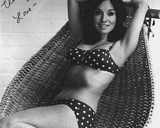April Stevens: Love Kitten (1961)