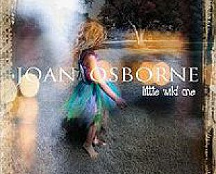 Joan Osborne: Little Wild One (Plum)