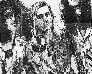 MEAT PUPPETS 1982-88: Acid rock baked by desert grunge