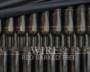 BEST OF ELSEWHERE 2011 Wire: Red Barked Tree (Pink Flag)