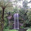 Milla Milla Falls in the Atherton Tablelands, northern Australia.