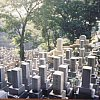 Cemetery in southern Japan. Makes more sense when you know it is in Nagasaki.