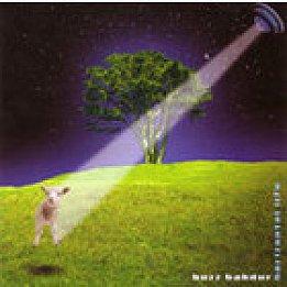 Buzz Bahdur: Horizontal Life (Rhythmethod)