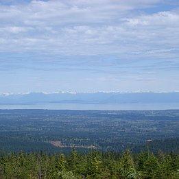 Coastal Trek Lodge, Vancouver Island, Canada: Where the wild things are
