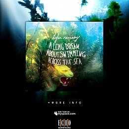 Tyler Ramsey: A Long Dream About Swiming Across the Sea (Shock)