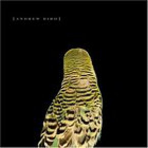 Andrew Bird: Armchair Apocrypha (Spunk) BEST OF ELSEWHERE 2007