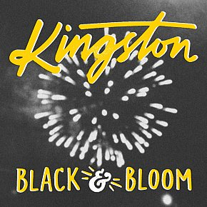 Kingston: Black and Bloom (Aeroplane)