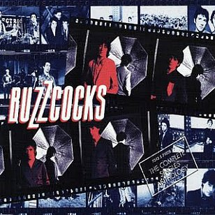 THE BUZZCOCKS (2013): A Different Kind of Punk