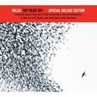 Wilco; Sky Blue Sky (Nonesuch) BEST OF ELSEWHERE 2007