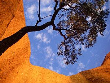 Uluru/Ayers Rock, Outback Australia: Into the great wide open