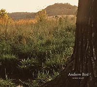 Andrew Bird: Noble Beast (Fat Possum)