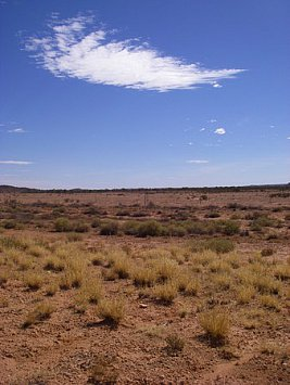 The Australian Outback: Dry land, dry characters, dry throat